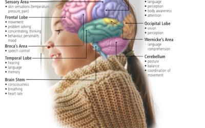Music's Effects on Brain Development